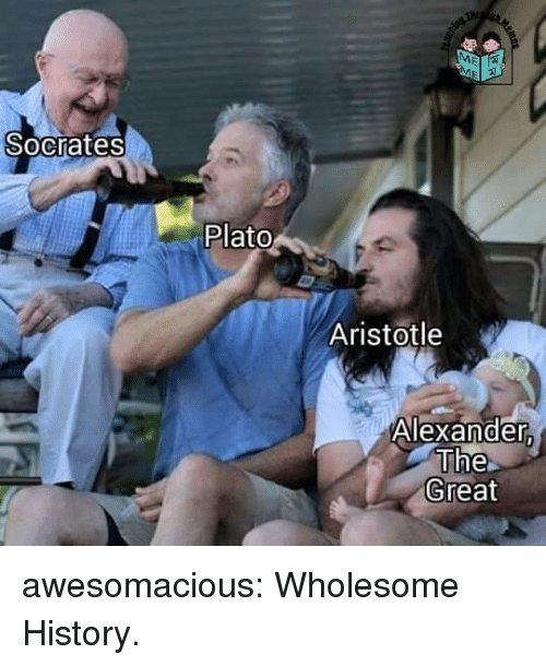 Tumblr, Aristotle, and Blog: Socrates  Plato  Aristotle  Alexander  The  Great awesomacious:  Wholesome History.
