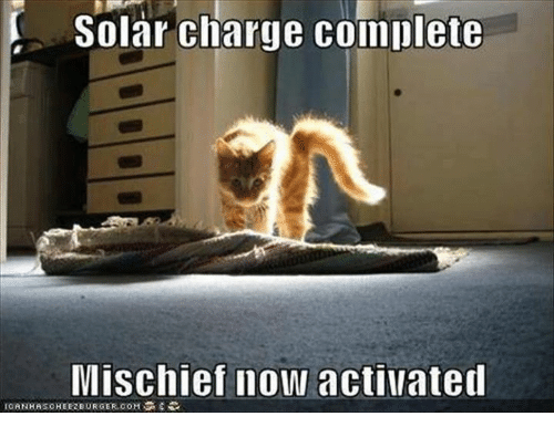 Memes, 🤖, and Charge: Solar charge complete  Mischief now activated