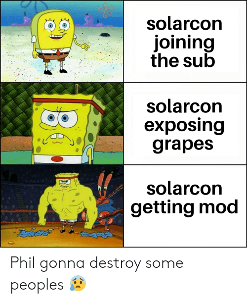 Mod, Grapes, and Gonna: solarcon  joining  the sub  solarcon  exposing  grapes  solarcon  getting mod Phil gonna destroy some peoples 😰