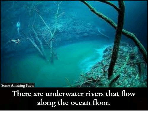 Facts about ocean floor thefloors co for 10 facts about sea floor spreading
