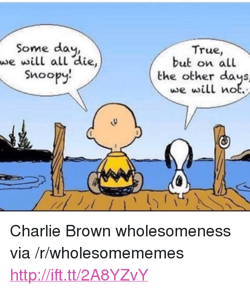 "Charlie, True, and Http: Some day,  we will all die  Snoopy.  True,  but on all  the other days  we will not. <p>Charlie Brown wholesomeness via /r/wholesomememes <a href=""http://ift.tt/2A8YZvY"">http://ift.tt/2A8YZvY</a></p>"