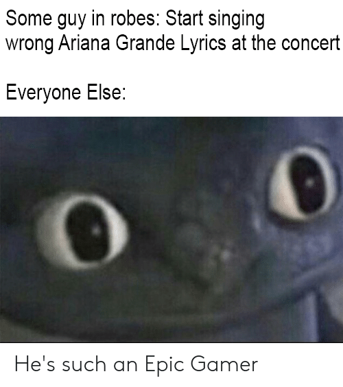 Ariana Grande, Singing, and Lyrics: Some guy in robes: Start singing  wrong Ariana Grande Lyrics at the concert  Everyone Else: He's such an Epic Gamer