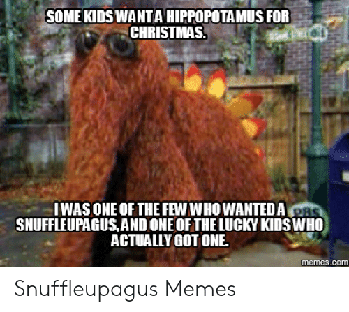 Christmas Memes For Kids.Some Kids Wantahippopotamusfor Christmas Iwas One Of The Few