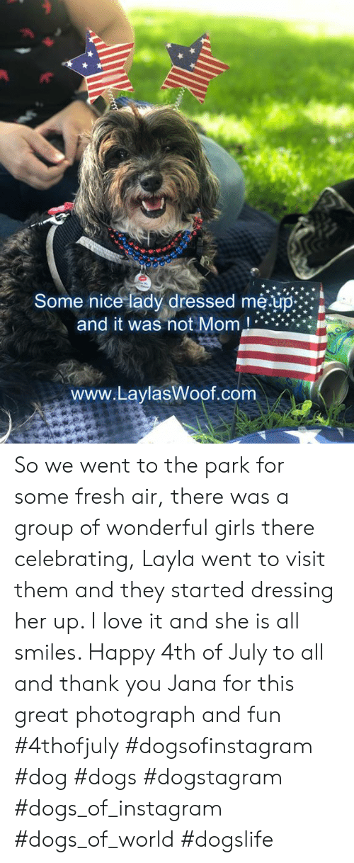 Dogs, Fresh, and Girls: Some nice lady dressed me.up  and it was not Mom,  www.LaylasWoof.com  ww So we went to the park for some fresh air, there was a group of wonderful girls there celebrating, Layla went to visit them and they started dressing her up.  I love it and she is all smiles. Happy 4th of July to all and thank you Jana for this great photograph and fun  #4thofjuly #dogsofinstagram #dog #dogs #dogstagram #dogs_of_instagram #dogs_of_world #dogslife