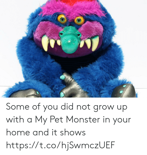 Memes, Monster, and Home: Some of you did not grow up with a My Pet Monster in your home and it shows https://t.co/hjSwmczUEF