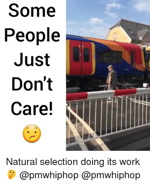 some people just dont care natural selection doing its work 20240087 ✅ 25 best memes about natural selection natural selection memes