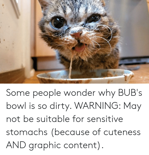 Memes, Dirty, and Content: Some people wonder why BUB's bowl is so dirty.  WARNING: May not be suitable for sensitive stomachs (because of cuteness AND graphic content).