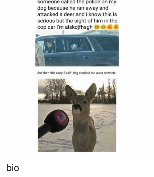 Crazy, Deer, and Police: someone called the police on my  dog because he ran away and  attacked a deer and i know this is  serious but the sight of him in the  cop car i'm alskdjfhsgh B8  And then this crazy fuckin' dog attacked me outta nowhere. bio