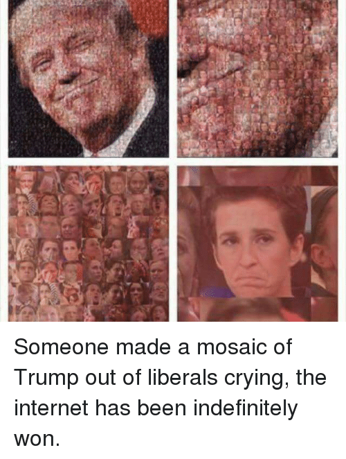 Internet, Memes, and Liberalism: Someone made a mosaic of Trump out of liberals crying, the internet has been indefinitely won.