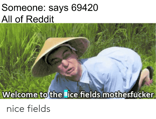 Someone Says 69420 All of Reddit Welcome to the Lice Fields