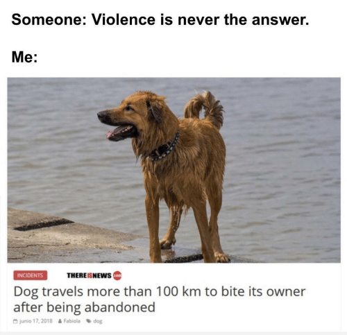 Anaconda, Never, and Answer: Someone: Violence is never the answer.  Me:  THEREISNEws  INCIDENTS  cotm  Dog travels more than 100 km to bite its owner  after being abandoned  G junio 17, 2018  Fabiola dog