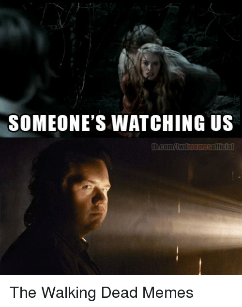 Game of Thrones, Meme, and Memes: SOMEONE'S WATCHING US  fb.com/MWdniemesofficia The Walking Dead Memes