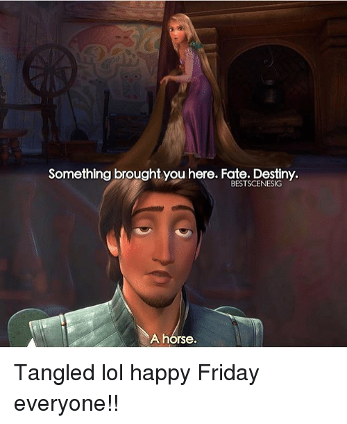 Destiny, Friday, and Lol: Something brought you here. Fate. Destiny  BESTSCENESIG  A horse. Tangled lol happy Friday everyone!!