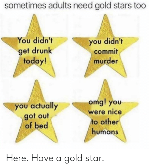 Drunk, Omg, and Reddit: sometimes adults need gold stars too  You didn't  you didn't  get drunk  today!  commit  murder  omg! you  you actually  got out  of bed  were nice  to other  humans Here. Have a gold star.