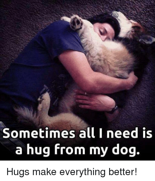 I Want To Cuddle With You Quotes: 25+ Best Memes About Dog Hug