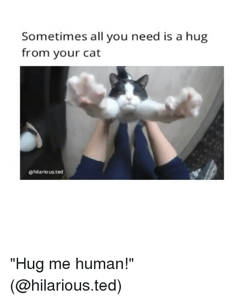 I Want To Cuddle With You Quotes: Wait No Memes, Really Good Memes