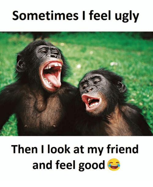 Ugly, Good, and Looking: Sometimes I feel ugly  Then I look at my friend  and feel good