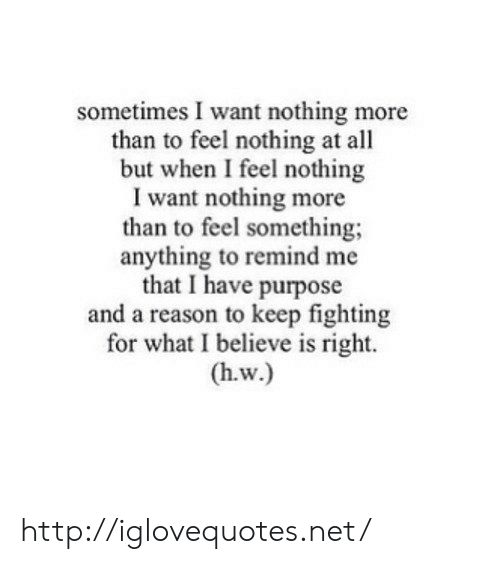 Http, Reason, and Net: sometimes I want nothing more  than to feel nothing at all  but when I feel nothing  I want nothing more  than to feel something;  anything to remind me  that I have purpose  and a reason to keep fighting  for what I believe is right. http://iglovequotes.net/