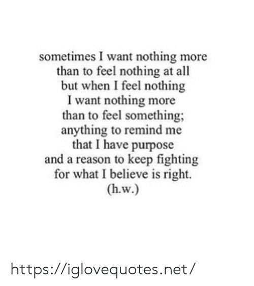 Reason, Net, and Fighting: sometimes I want nothing more  than to feel nothing at all  but when I feel nothing  I want nothing more  than to feel something  anything to remind me  that I have purpose  and a reason to keep fighting  for what I believe is right.  (h.w.) https://iglovequotes.net/