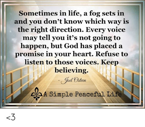 God, Life, and Memes: Sometimes in life, a fog sets in  and you don't know which way iS  the right direction. Every voice  may tell you it's not going to  happen, but God has placed a  promise in your heart. Refuse to  listen to those voices. Keep  believing.  od steen  oA Simple Peaceful Life <3