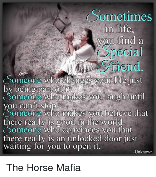 Sometimes In Life You Find A Special Friend Someone Who Changes Your