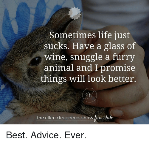 Ellen DeGeneres, Memes, and The Ellen DeGeneres Show: Sometimes life just  sucks. Have a glass of  Wine, snuggle a furry  animal and I promise  things will look better.  the ellen degeneres show  an club Best. Advice. Ever.