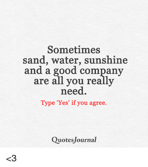 Sometimes Sand Water Sunshine And Good Company Are All You Really