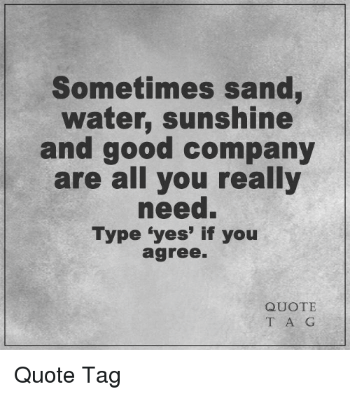 Good Company Quotes Sometimes Sand Water Sunshine and Good Company Are All You Really  Good Company Quotes