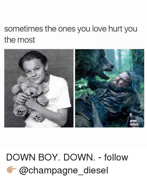 Love, Memes, and Champagne: sometimes the ones you love hurt you  the most DOWN BOY. DOWN. - follow 👉🏽 @champagne_diesel
