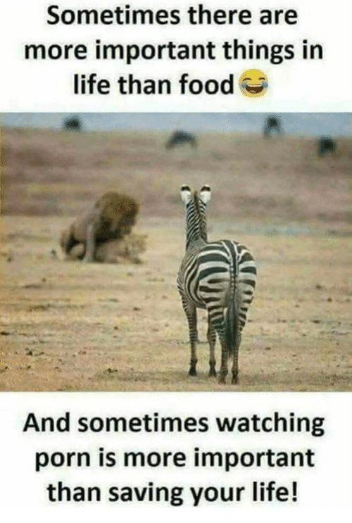 Saving Life me Porn Your Watching Than There In Meme Are Is More Life Food Sometimes On Me And Important Things
