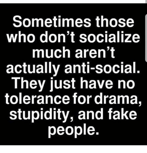 Fake, Memes, and Stupidity: Sometimes those  who don't socialize  much aren't  actually anti-social.  They just have no  tolerance for drama,  stupidity, and fake  people
