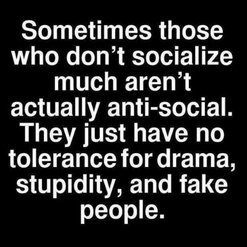 Fake, Memes, and Stupidity: Sometimes those  who don't socialize  much aren't  actually anti-social.  They just have no  tolerance for drama,  stupidity, and fake  people.