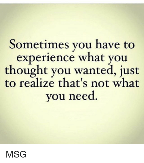 Memes, Experience, and Thought: Sometimes vou have to  experience what you  thought you wanted, just  to realize that's not what  you need MSG
