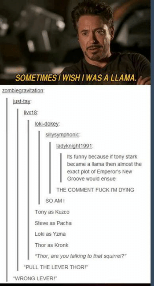 "Emperor's New Groove, Funny, and Kronk: SOMETIMES WISHI WAS A LLAMA  zombiegravitation  ust-tay  livx18  loki-dokey  sillysymphonic  ladyknight1991  Its funny because if tony stark  became a llama then almost the  exact plot of Emperor's New  Groove would ensue  THE COMMENT FUCK IM DYING  SO AMI  Tony as Kuzco  Steve as Pacha  Loki as Yzma  Thor as Kronk  ""Thor, are you talking to that squirrei?  PULL THE LEVER THOR!""  WRONG LEVER!"