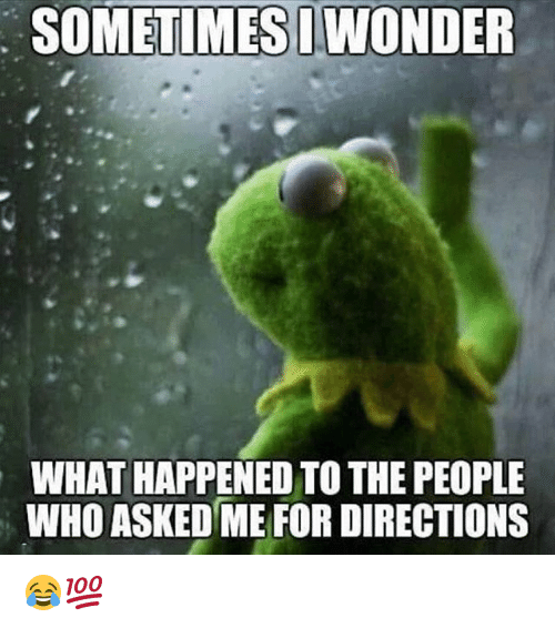 Memes, Wonder, and 🤖: SOMETIMES  WONDER  WHAT HAPPENED TO THE PEOPLE  WHO ASKED ME FOR DIRECTIONS 😂💯