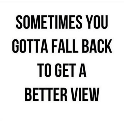 Memes, 🤖, and  Falling Back: SOMETIMES YOU  GOTTA FALL BACK  TO GET A  BETTER VIEW