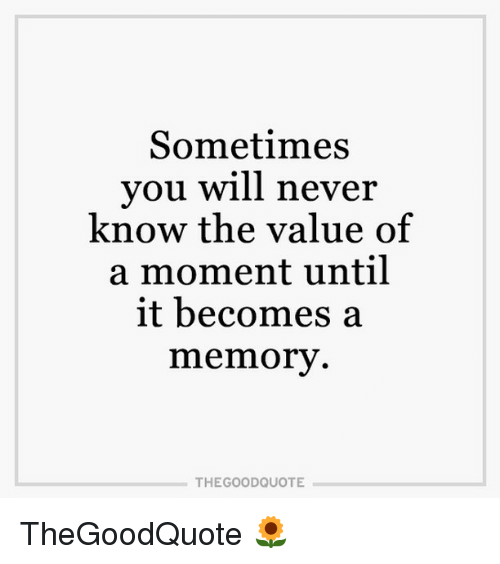Memes, 🤖, and Will Never Know: Sometimes  you will never  know the value of  a moment until  it becomes a  memory  THE GOOD QUOTE TheGoodQuote 🌻