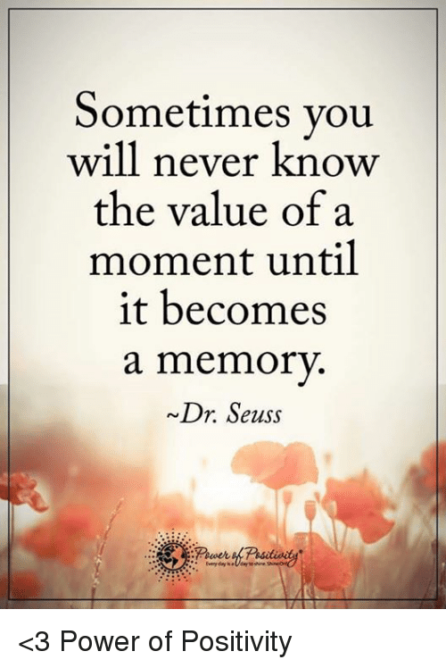 Dr. Seuss, Memes, and 🤖: Sometimes you  will never know  the value of a  moment until  it becomes  a memory.  ~Dr. Seuss <3 Power of Positivity