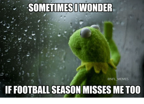 Football, Memes, and Nfl: SOMETIMESI WONDER  @NFL MEMES  IF FOOTBALL SEASON MISSES ME T00