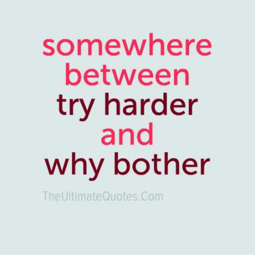 Somewhere Between Try Harder And Why Bother The Ultimate Quotescom