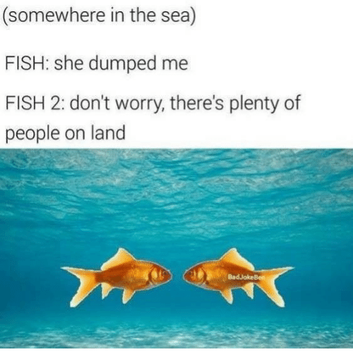 Fish, She, and Somewhere: (somewhere in the sea)  FISH: she dumped me  FISH 2: don't worry, there's plenty of  people on land  BadJokeBen