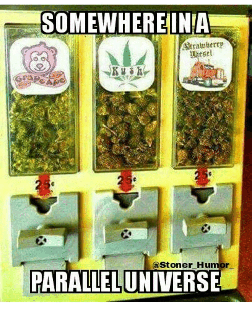 Memes, 🤖, and Parallels: SOMEWHERE INA  Strawberrp  uitsel  (a Stoner Humor  PARALLEL UNIVERSE
