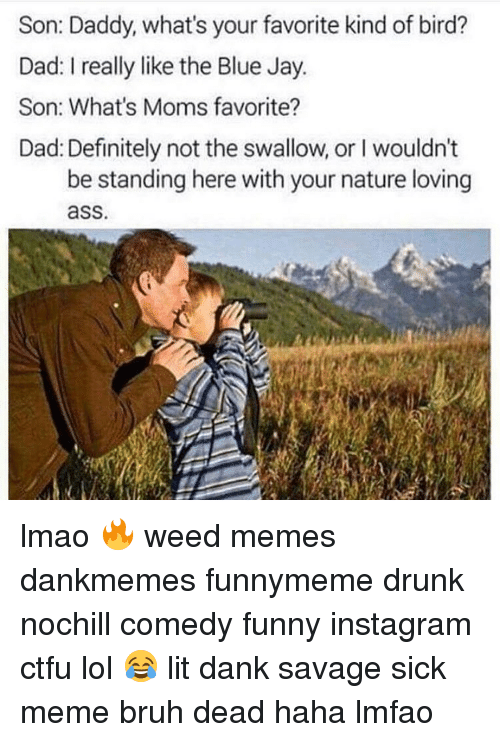 son daddy whats your favorite kind of bird dad i 14328096 25 best funny instagram memes fucking weird memes