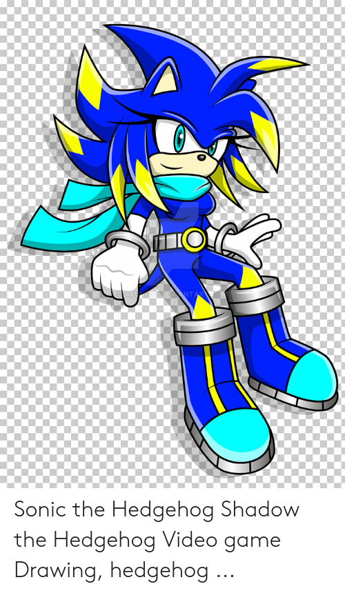 Sonic The Hedgehog Shadow The Hedgehog Video Game Drawing Hedgehog Sonic The Hedgehog Meme On Me Me