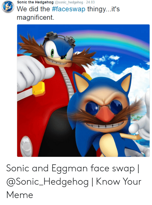 Sonic The Hedgehog 2403 We Did The Faceswap Thingy It S Magnificent Sonic And Eggman Face Swap Know Your Meme Meme On Me Me