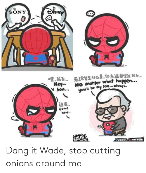 🔥 25+ Best Memes About Wade | Wade Memes
