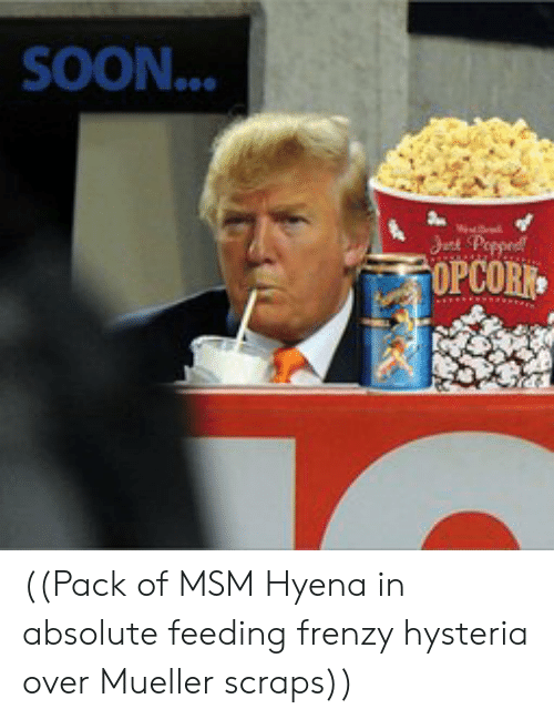 Soon..., Msm, and Hyena: SOON...  OPCOR ((Pack of MSM Hyena in absolute feeding frenzy hysteria over Mueller scraps))