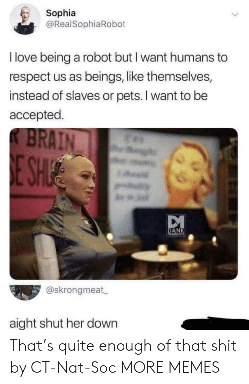 Dank, Love, and Memes: Sophia  @RealSophiaRobot  I love being a robot but I want humans to  respect us as beings, like themselves,  instead of slaves or pets. I want to be  accepted.  K BRAIN  og  E SHUE  DANK  @skrongmeat  aight shut her down That's quite enough of that shit by CT-Nat-Soc MORE MEMES