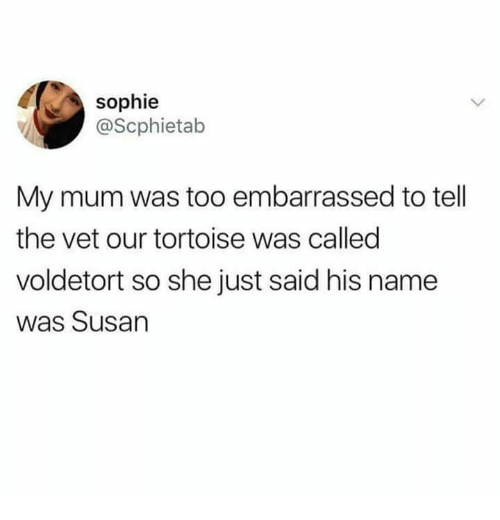 Tortoise, Name, and She: sophie  @Scphietab  My mum was too embarrassed to tell  the vet our tortoise was called  voldetort so she just said his name  was Susan