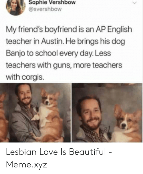 Beautiful, Friends, and Guns: Sophie Vershbow  @svershbow  My friend's boyfriend is an AP English  teacher in Austin. He brings his dog  Banjo to school every day. Less  teachers with guns, more teachers  with corgis. Lesbian Love Is Beautiful - Meme.xyz